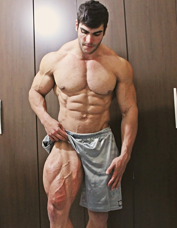 tren ace vascularity